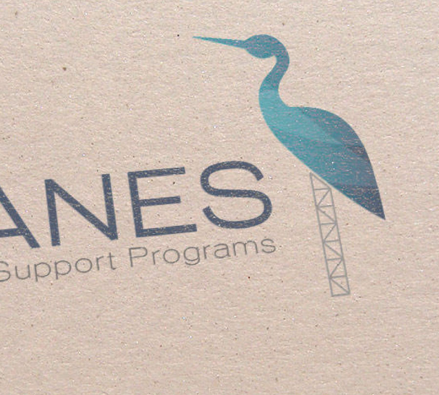 Cranes logo design and development, Northern NSW